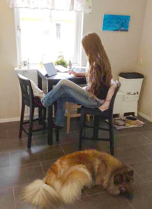 Lisa sitter vid köksbord och illustrerar