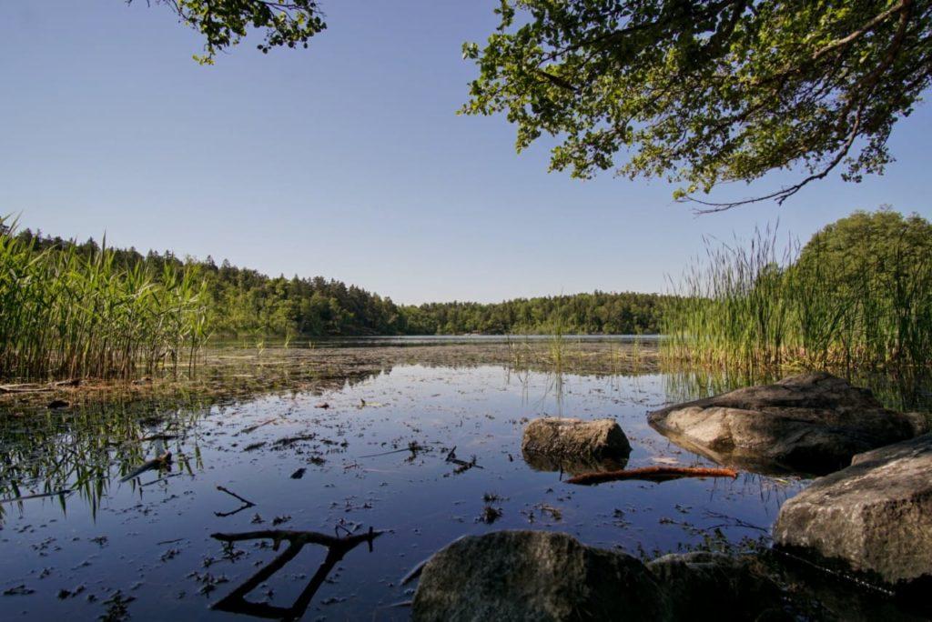 The Lake and Nature