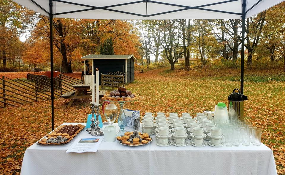 Forest Fika