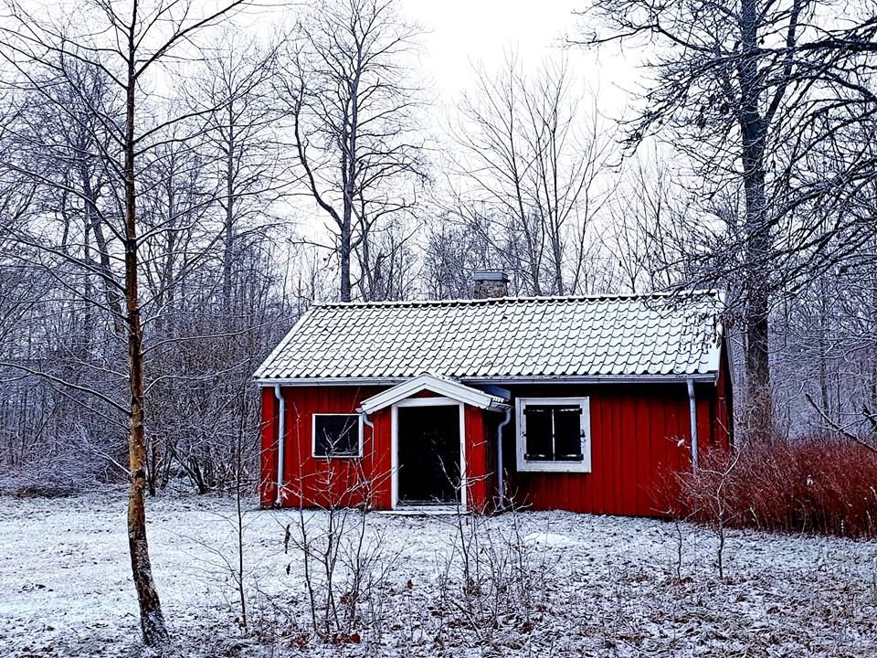 Winter in Småland, a red house in the forest during winter