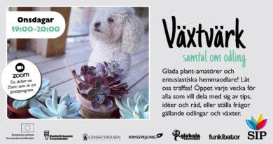 Bild med foto på en liten hund jämte suckulenter